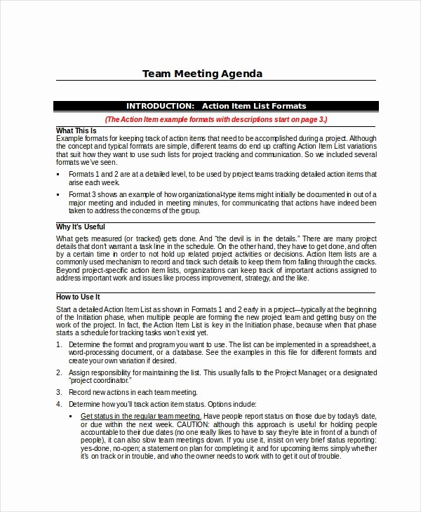Project Team Meeting Agenda Template Best Of Project Agenda Template 6 Free Word Pdf Documents