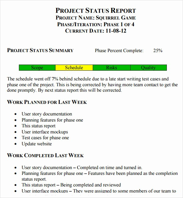 Project Weekly Status Report Template Awesome 14 Sample Useful Project Status Report Templates
