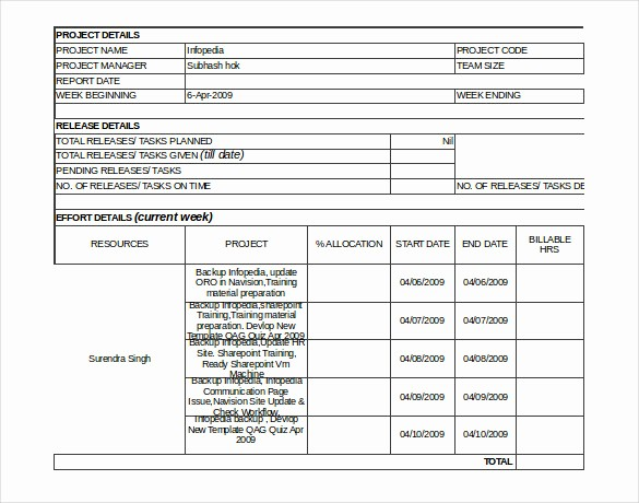 Project Weekly Status Report Template Lovely Status Report Templates 12 Free Word Documents Download
