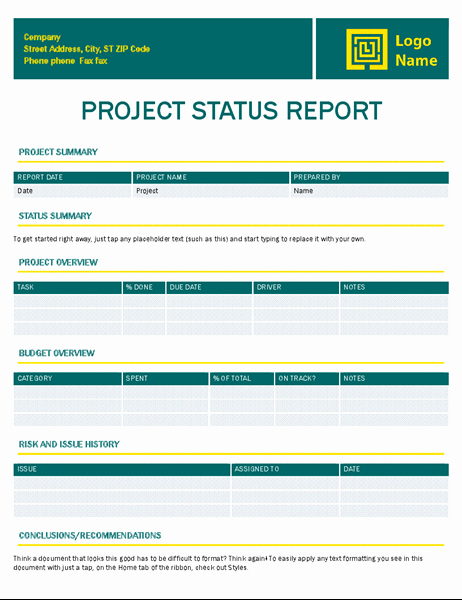 Project Weekly Status Report Template Luxury Project Status Report Timeless Design