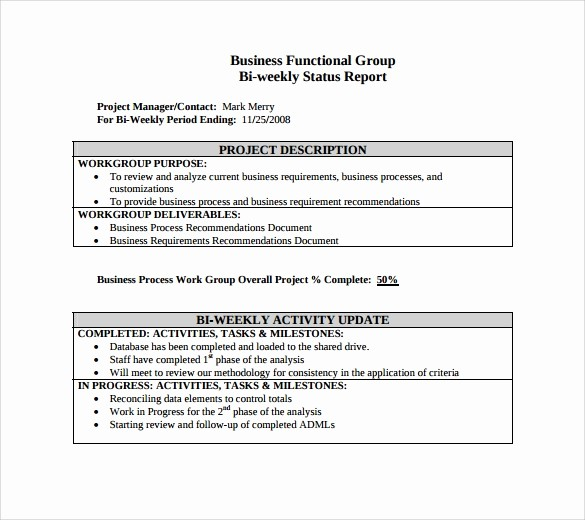 Project Weekly Status Report Template Unique 8 Sample Weekly Status Reports