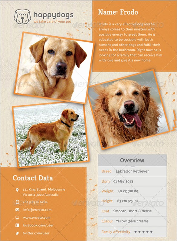 Puppies for Sale Flyer Template Beautiful 12 Psd Lost Dog Flyer Templates