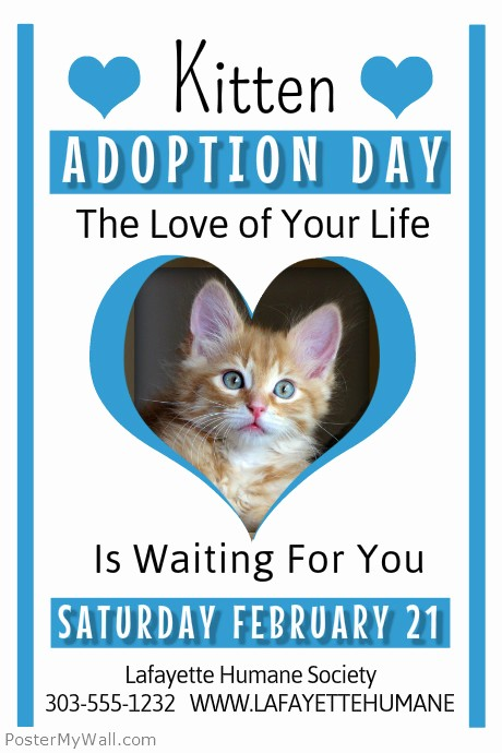 Puppies for Sale Flyer Template Beautiful Kitten Adoption Template