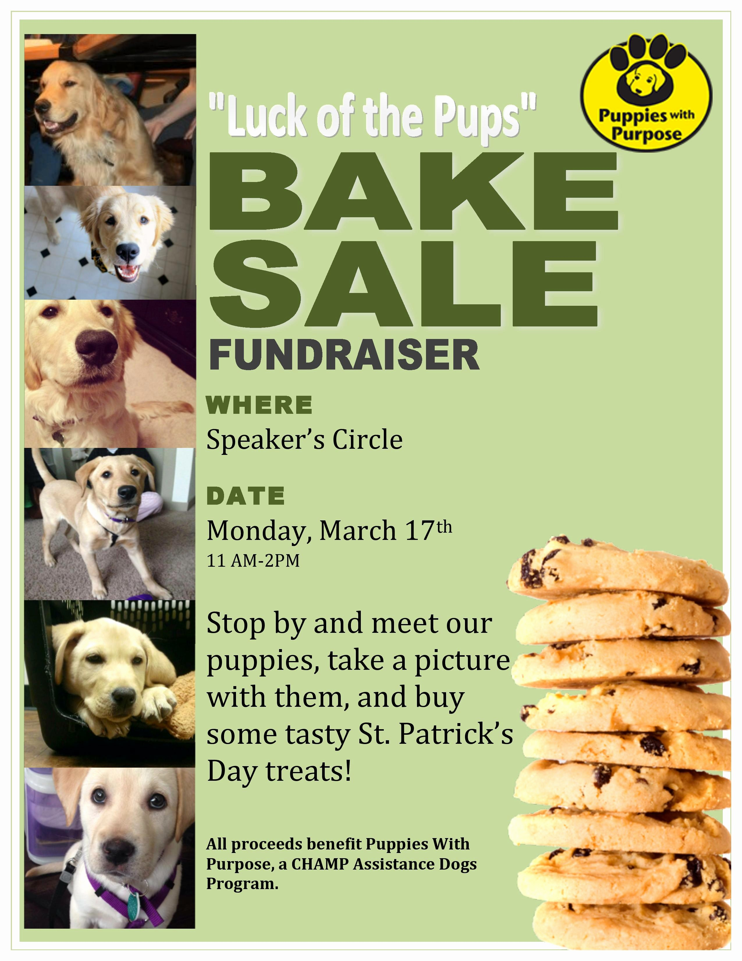 Puppies for Sale Flyer Template Best Of Bake Sale Fundraiser Flyer Related Keywords Bake Sale