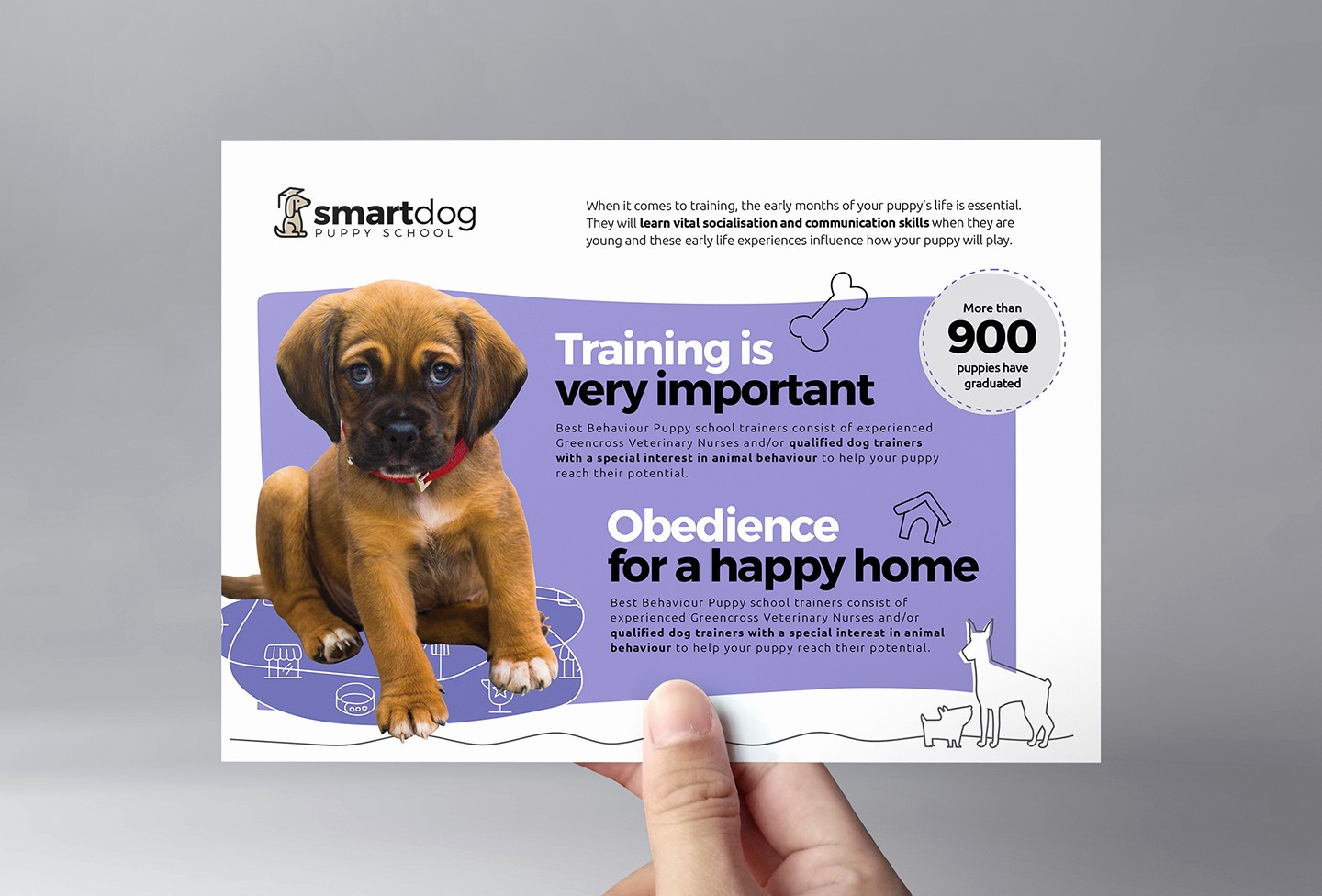 Puppies for Sale Flyer Template Luxury Puppies for Sale Flyer Template
