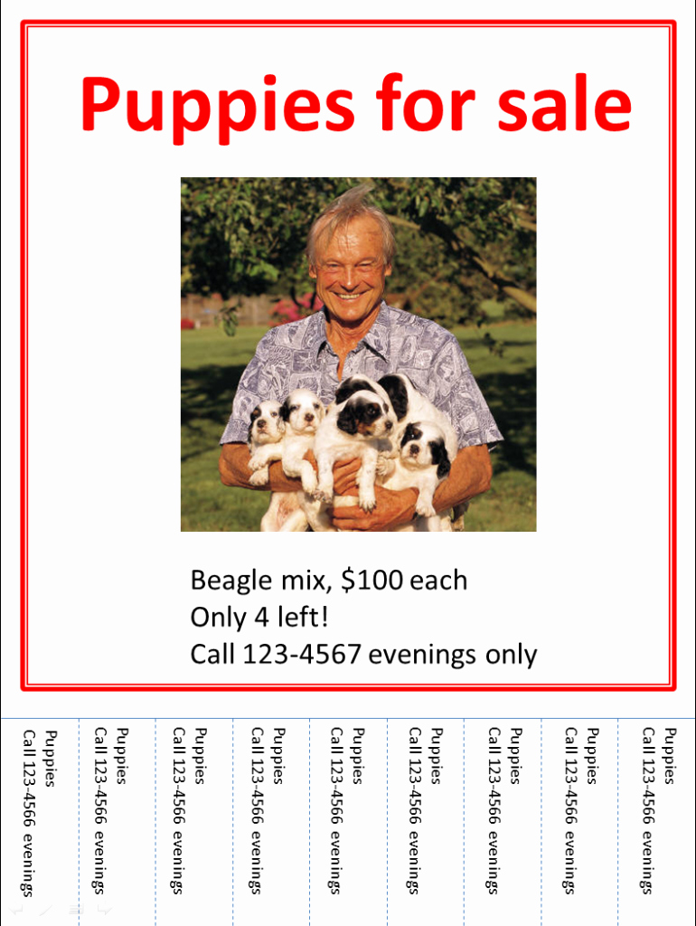 Puppy for Sale Flyer Templates Awesome Puppies for Sale Flyer Template – Exploredogs