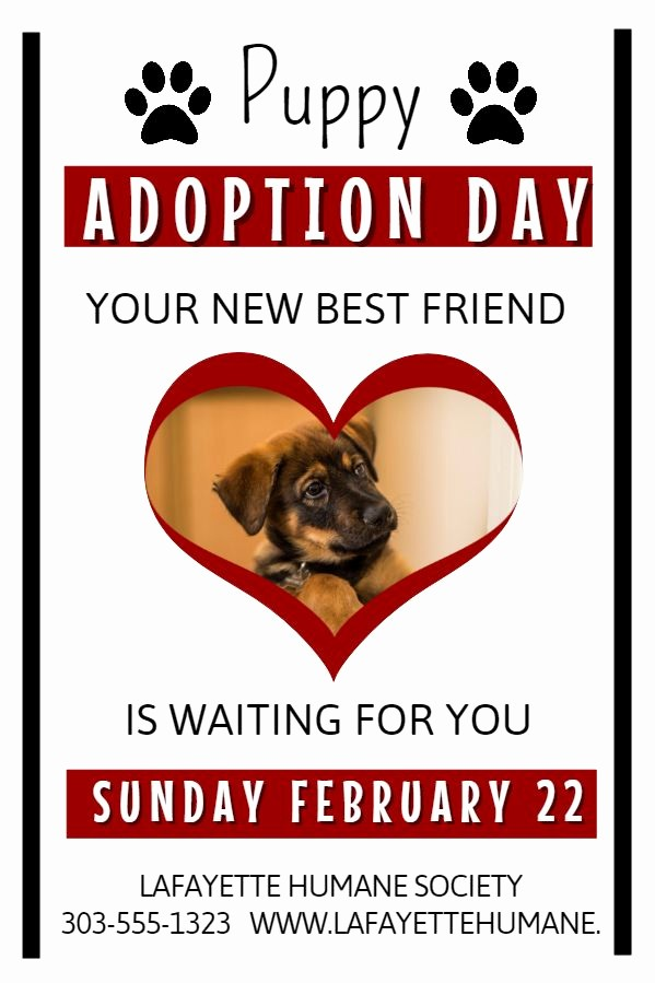 Puppy for Sale Flyer Templates Beautiful Dog Adoption Flyer Template Yourweek Aa57a7eca25e