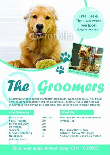 Puppy for Sale Flyer Templates Best Of Memorial Flyer Template Yourweek 6e134feca25e