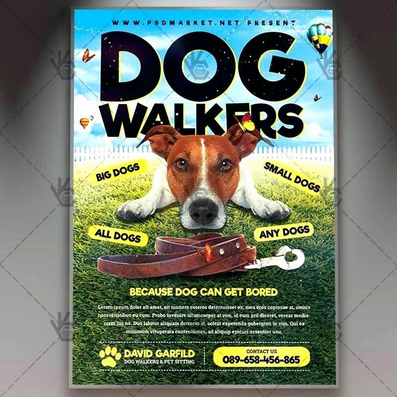 Puppy for Sale Flyer Templates Fresh Pet Sitter Animal Cat Dog Bird Flyer Poster Announcement
