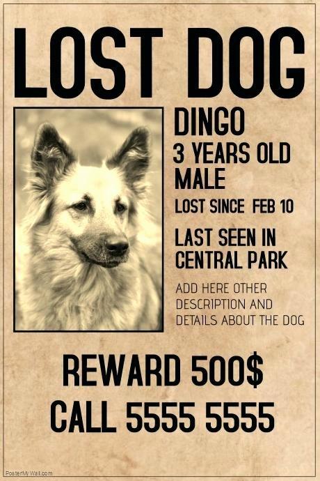 Puppy for Sale Flyer Templates Inspirational Pet Sitter Animal Cat Dog Bird Flyer Poster Announcement