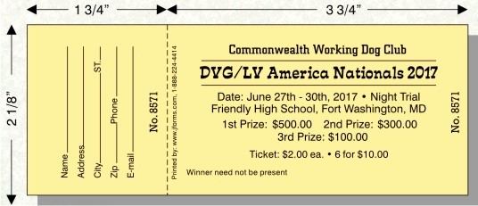 Raffle Ticket Samples for Fundraisers Awesome Raffle Ticket Size D by Jforms Perforated and Numbered
