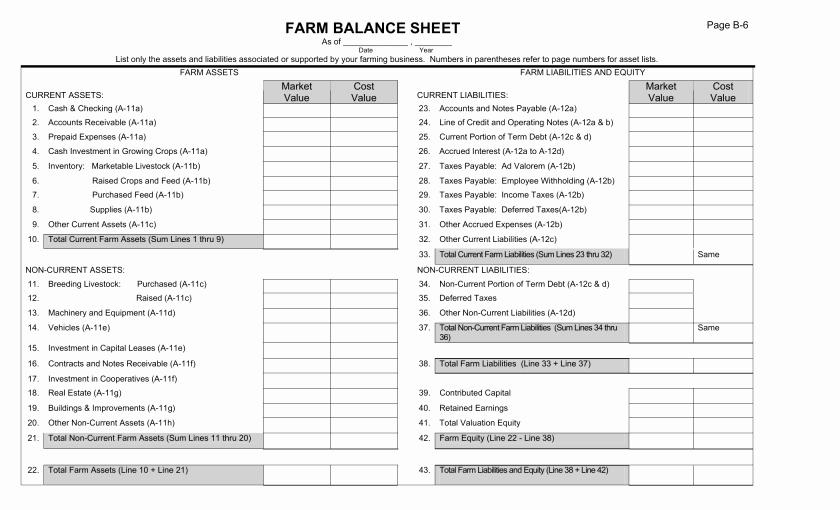 Real Estate Balance Sheet Sample Awesome Balance Sheet Template for Real Estate Example form Blank