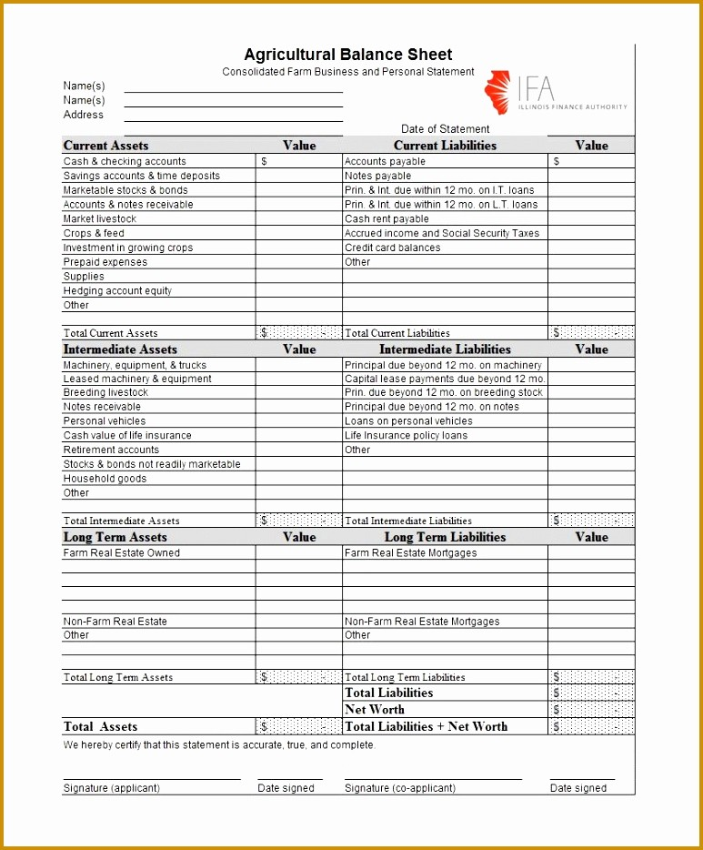 Real Estate Balance Sheet Sample Lovely 7 Real Estate Balance Sheet Template