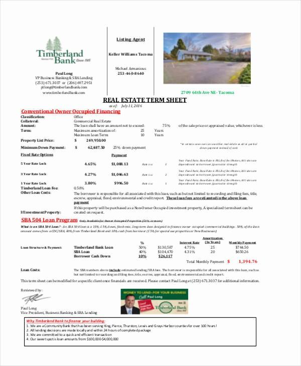 Real Estate Balance Sheet Sample Unique 39 Sheet Samples & Templates