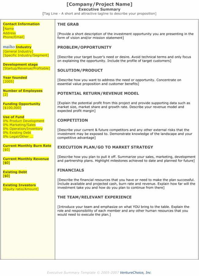 Real Estate Executive Summary Template Lovely 5 Executive Summary Templates for Word Pdf and Ppt