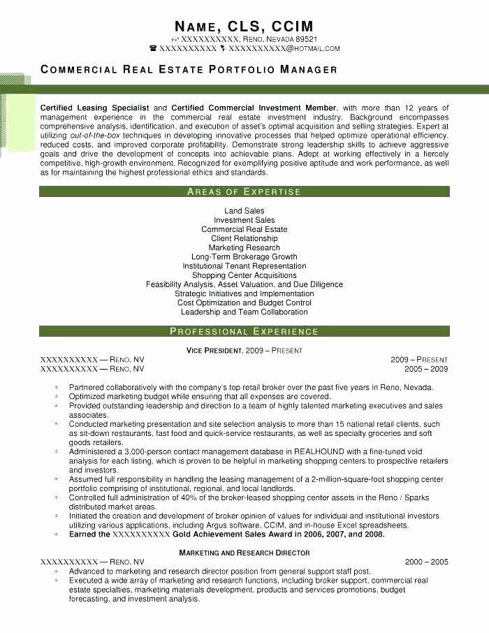Real Estate Executive Summary Template Luxury E Page Investment Summary Templates Free Executive