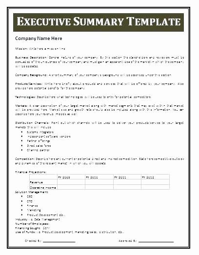 Real Estate Executive Summary Template Unique Executive Summary A Business Plan Template Printable