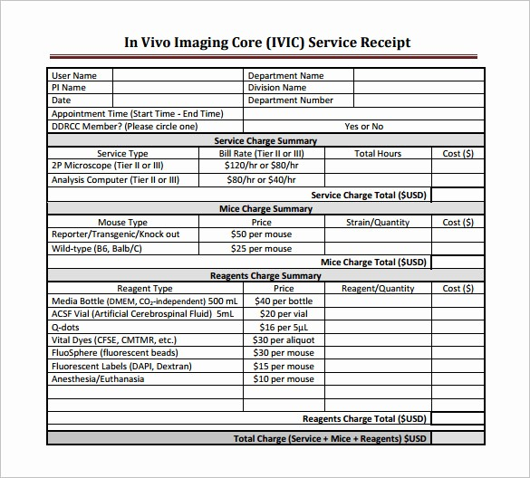 Receipt for Services Template Free Fresh 17 Service Receipt Templates Doc Pdf