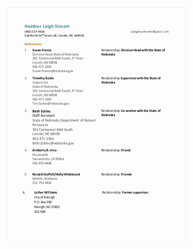 References Page format for Resume Luxury Functional Resume Reference Sheet 1
