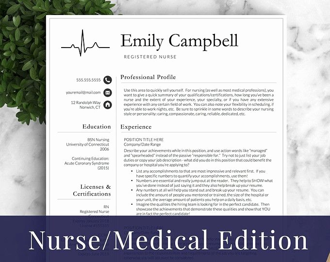 Registered Nurse Resume Template Word Elegant Best 25 Rn Resume Ideas On Pinterest