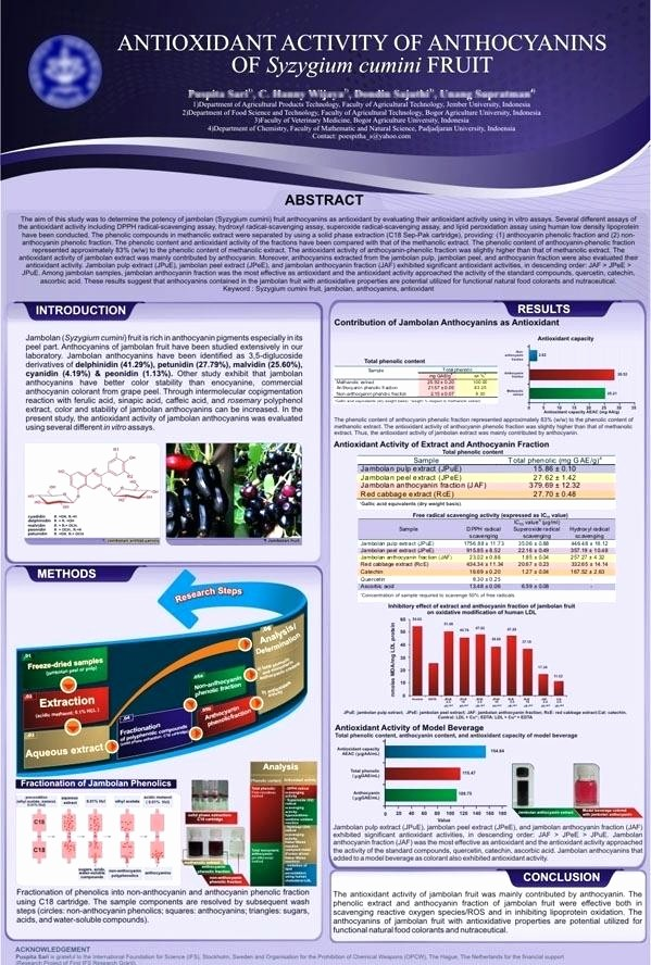 Research Poster Template for Powerpoint Best Of How to Create A Scientific Poster In Template A0 Portrait