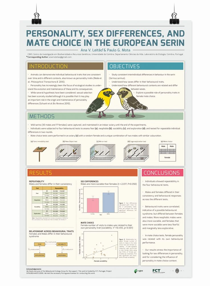 Research Poster Template for Powerpoint Unique 25 Best Ideas About Scientific Poster Design On Pinterest