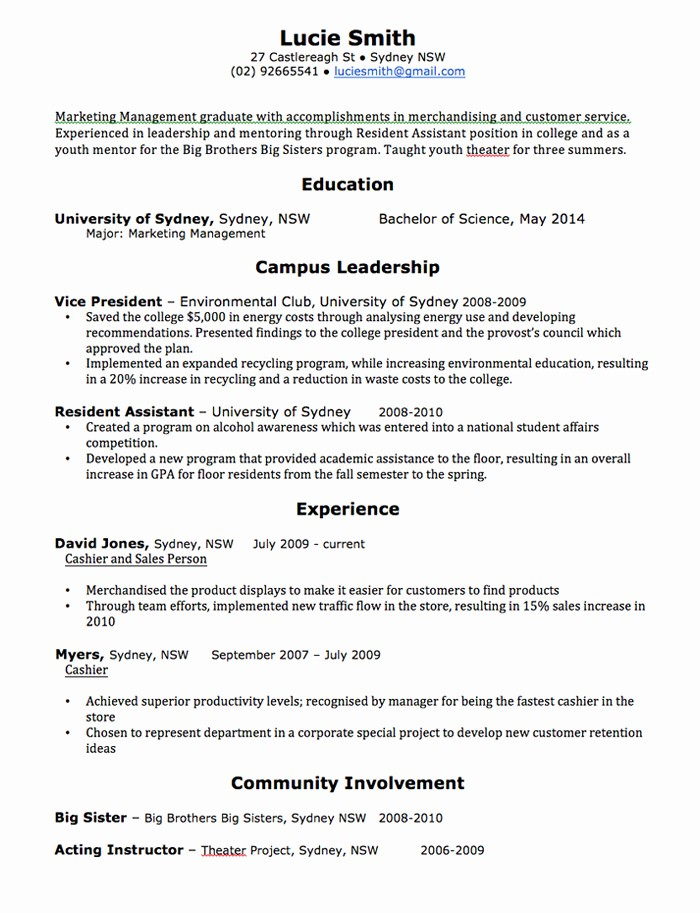 Resume Examples In Word format Best Of Cv Template