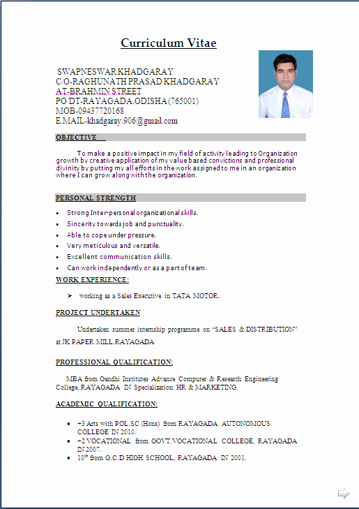 Resume Examples In Word format New Resume Sample In Word Document Mba Marketing & Sales
