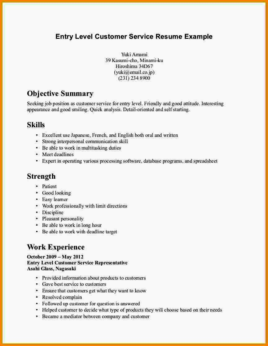 Resume for Entry Level Position Luxury Entry Level Resume Summary Statement