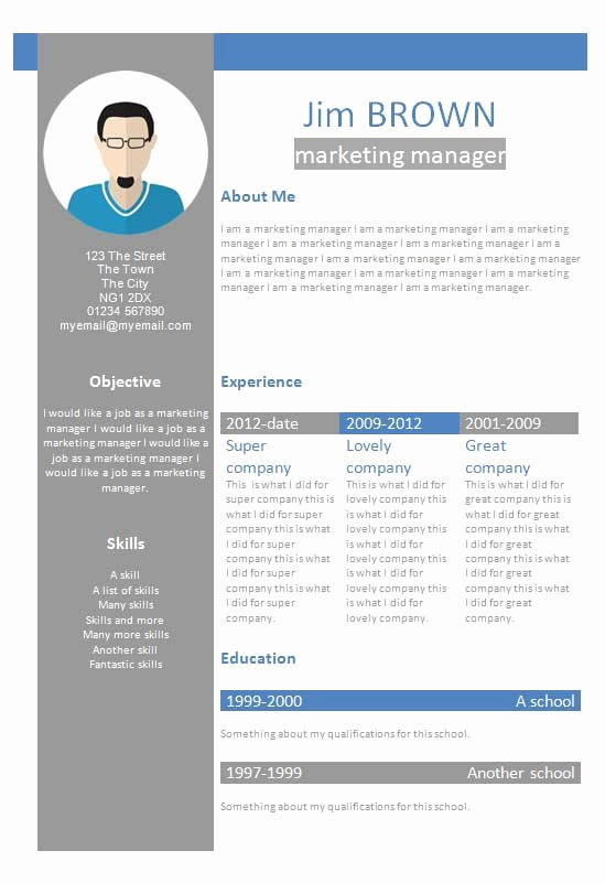 Resume format In Ms Word Luxury Template Resume Word Pelosleclaire