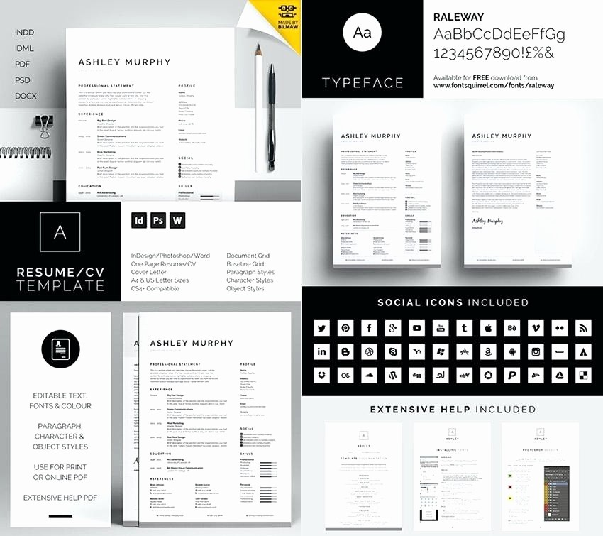 Resume Template Download Microsoft Word Elegant Microsoft Word Resume Templates 2015 Ms Template Download