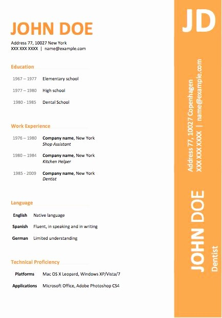 Resume Template On Microsoft Word Beautiful 11 Best Images About Professional and Creative Resume