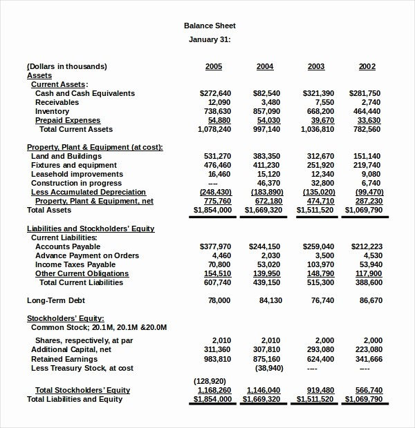 S Corp Balance Sheet Template Inspirational 18 Balance Sheet Examples Download In Word Pdf