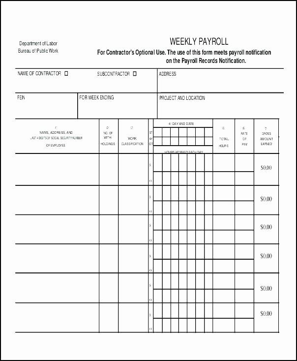 Salary Payroll Xls Excel Sheet Fresh Payroll In Excel format Xls – Whatafanub