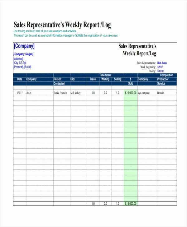 Sales Rep Activity Report Template Luxury 41 Sample Weekly Report Templates