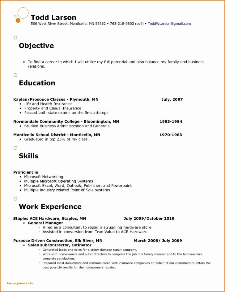 Sales Resume Template Microsoft Word Lovely Resume and Template Incredible Free Sales Resume