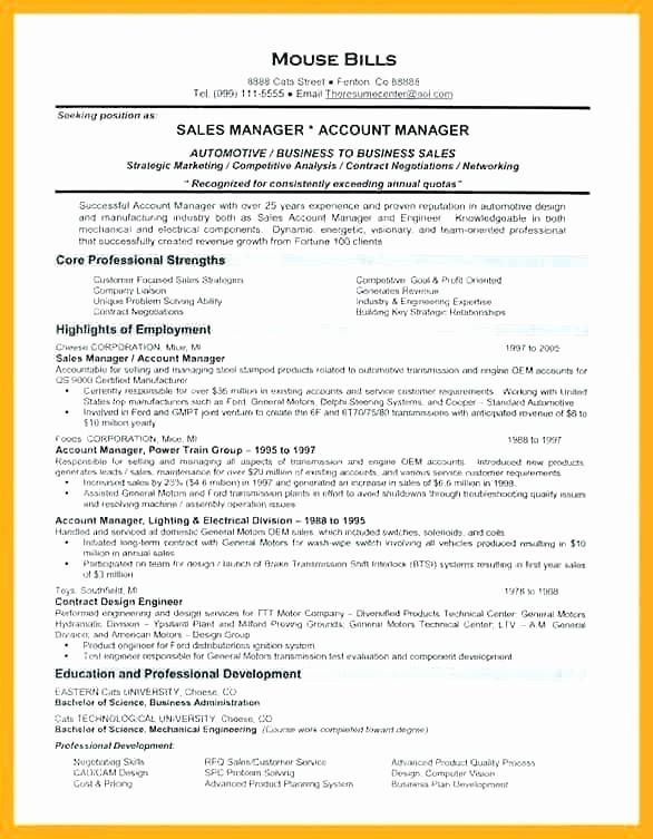 Sales Resume Template Microsoft Word Luxury Microsoft Word Sales Manager Resume Template World