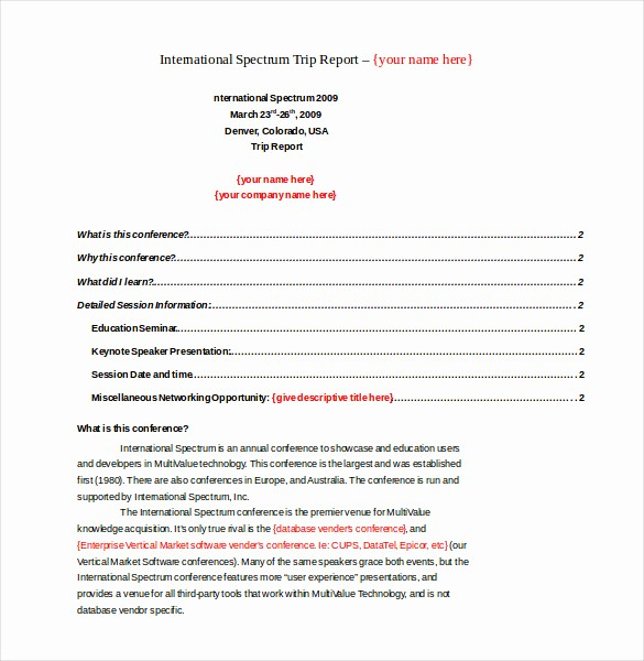 Sales Visit Report Template Word Awesome Trip Report Template Templates Collections