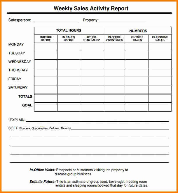 Sales Visit Report Template Word Beautiful Sales Report Template