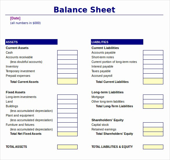 Sample Balance Sheet format Excel Lovely 18 Sample Balance Sheets