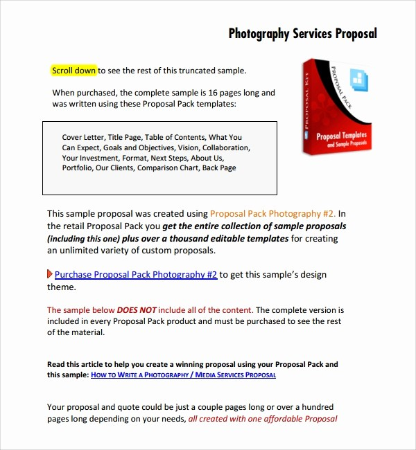 Sample Business Proposal for Services Beautiful 13 Graphy Proposal Templates