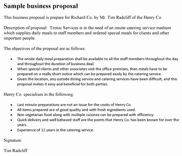 Sample Business Proposal for Services Inspirational Business Proposal Template