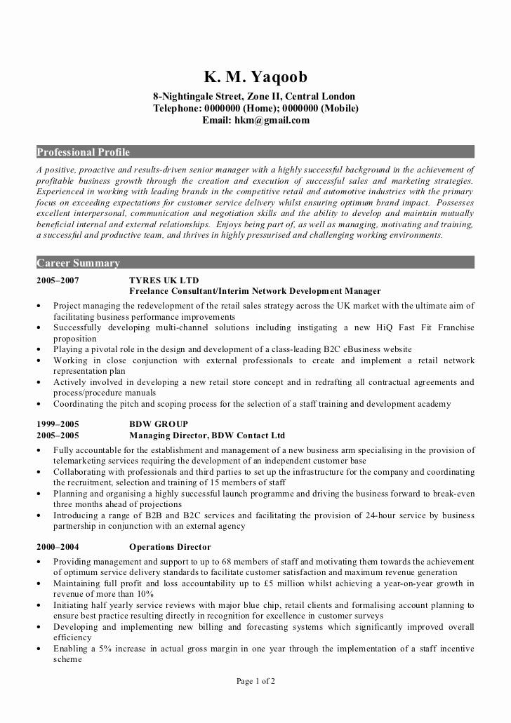 Sample Of Curriculum Vitae format Unique Professional Cv Sample