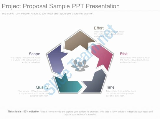 Sample Ppt for Project Presentation Beautiful Project Proposal Sample Ppt Presentation