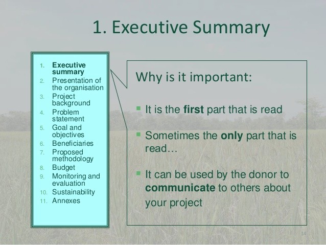 Sample Ppt for Project Presentation Lovely 10 Project Proposal Writing