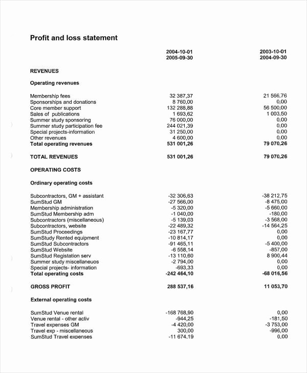 Sample Profit & Loss Statement Best Of Sample Profit and Loss Statement – Amandae