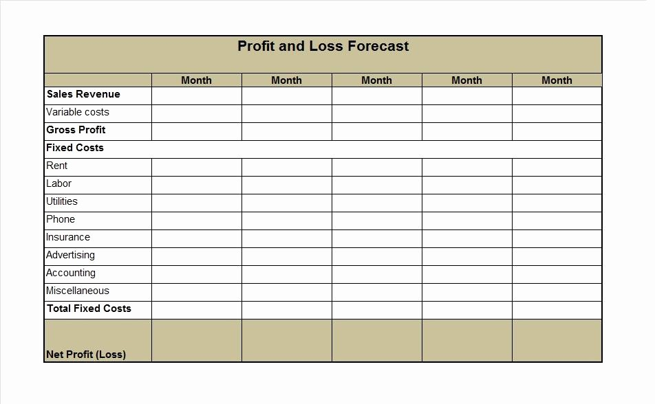 Sample Profit and Loss Sheet Fresh 35 Profit and Loss Statement Templates & forms