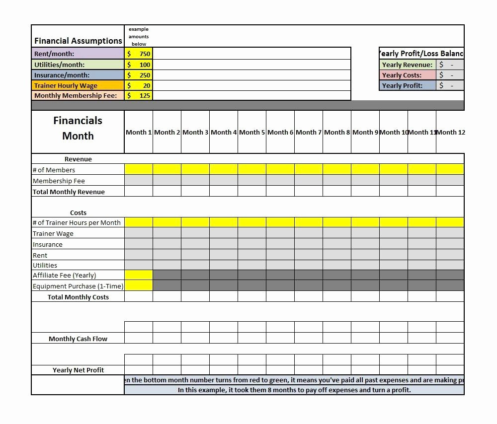 Sample Profit and Loss Sheet Inspirational assumptions for Profit and Loss Spreadsheet