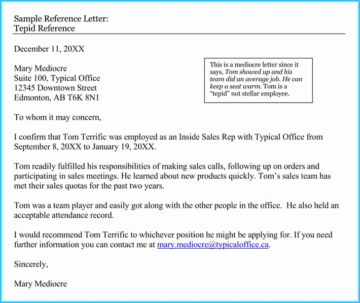 Sample Recommendation Letters for Employee Luxury 20 Best Reference Letter Examples and Writing Tips