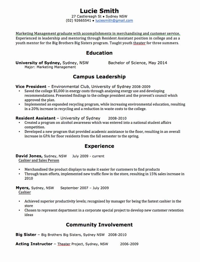 Sample Resume In Word format Elegant Cv Template